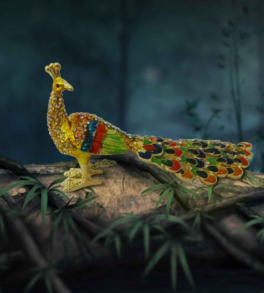 india wishbox peacock